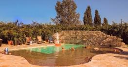 Ein eigener Pool im Garten sorgt auch im Alltag für ein wenig Ferienstimmung. Foto: djd/Bundesverband Schwimmbad & Wellness e.V.