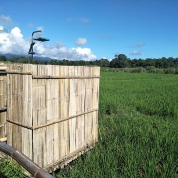 Sichtschutz aus Bambus Foto: Von M. PATTHAWEE